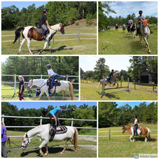 Camp horse activities like Trick riding and Vaulting