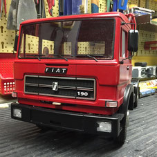 Mein FIAT IVECO  190NC 330