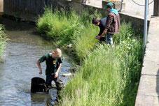 Fischbrut zur Stützung des Bestandes