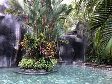 Baldi Hot Springs pase del día con una comida