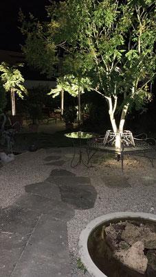 Sommernacht im Garten