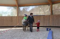Hippolini Reitunterricht für Kinder auf Fiedlers Drachenhof