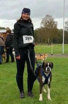strong dog Boxer Hund vonderwaldnielerheide