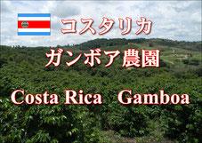 ブラジル エスプレッソレディー 深煎り
