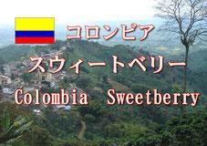 パナマ カミーノレアル