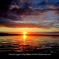 Pensez à réserver votre traversée de la baie de somme, votre sortie découverte des phoques en Baie de Somme avec Découvrons la baie de somme