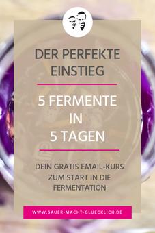 5 Fermente in 5 Tagen Kurs