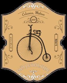 Celoznice; Mountainbike; Cyclocross; Roadbike; Rennrad; Bikepacking