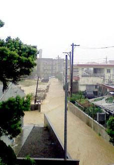 大雨で冠水した道路=5日午前、石垣市新川(読者提供)