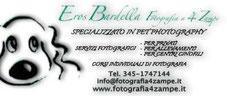 http://www.fotografia4zampe.it/