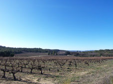 Vaucluse, terrain à vendre à Mondragon