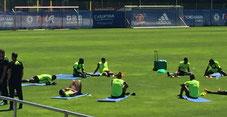 Die Spieler beim Streching nach dem Training