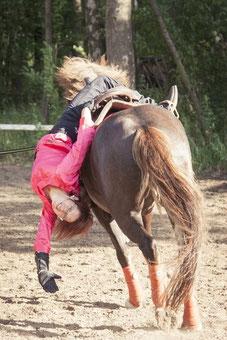 Летний конный интенсив