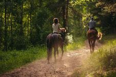 конные прогулки, катание верхом, на лошадях