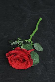 Photo sensuelle pour les femmes ou les couples