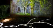 Spectacle son et lumière à la Maison du Marais poitevin