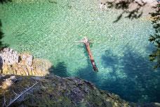 Photo été bois flottant rivière aux émeraudes Gaspésie Québec Canada par Marie Deschene photographe Pakolla