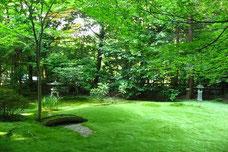 年間管理できれいになっている庭