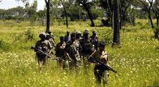 Ufficiali di sicurezza che pattugliano l'estesa foresta di Boni nella contea di Lamu