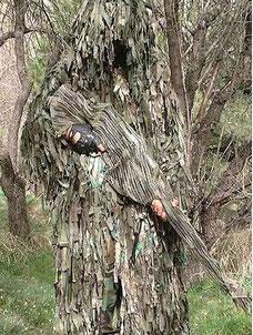 La foto mostra come le forze di difesa del Kenya (KDF) si vestano nella foresta di Boni quando combattono contro Al-Shabaab