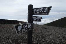 八ヶ岳 登山コース