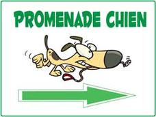 Panneaux promenade chien avec flèche droite et dessin de chien