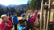Waldtag im Winter  - 1. Schulstufe
