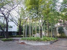 品川 大崎 近隣マンションのガーデン