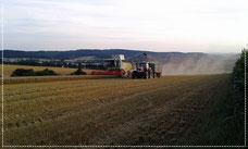 Getreide- & Rapsernte