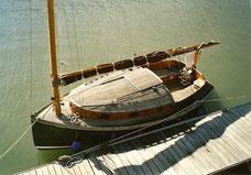 Catboot Seezunge Typ B