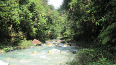Transporte Colectivo a Río Celeste