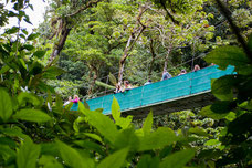 CR Sky Adventure - Sky Walk Arenal