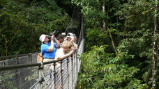 Arenal Combo Tour: Arenal Hanging Bridges & Hot Springs