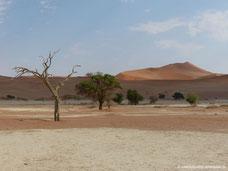 Dünen von Sossusvlei