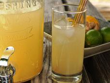 Limonaden-Sirup ohne Zucker