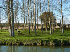 Picnic area of the watermill of Bellegarde (Vic-Bilh / Madiran)