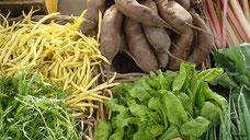 Verschiedene Gemüsearten in Körben