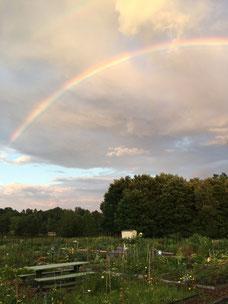 Double rainbow over WTCG