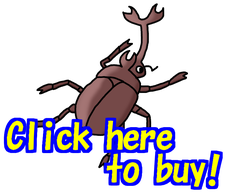 line sticker insects