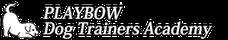 Playbow Logo