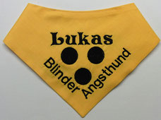 Blinden Logo, blinder Hund, Halstuch für blinden Hund,blind dog