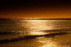 Pecheurs à la pointe du Cap Ferret , au soleil couchant, et ses reflets dorés