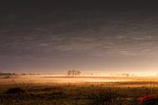 Eclat de lumiere au petit matin avec la brume naissante, eclairée en son centre de la lumiere du soleil