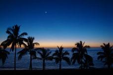 Palmen am Strand von Puerto Naos im Mondschein - Foto: Walter Bickel