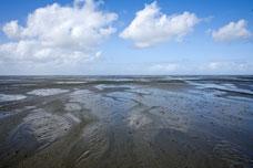 Niedersächsisches Wattenmeer