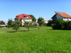 Es gibt keine Alternative zu Immobilien, präsentiert von VERDE Immobilien