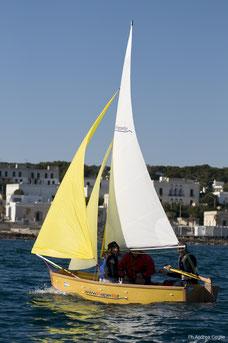 faltbares Segelboot; P8 Segelboot