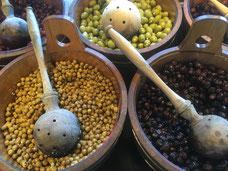 Ernte aus dem Hochbeet, Zwiebeln und Schalotten.