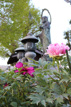 花に囲まれた水子地蔵
