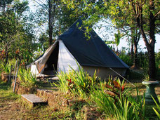 Tent van het Pondok Kunang Kunang hotel in Sambangan